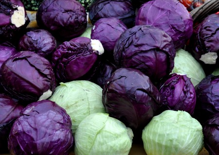 Cabbage from Nash's Organic Produce. Photo copyright 2013 by Zachary D. Lyons.