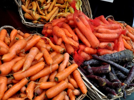 Over-wintered carrots from Alm Hill Gardens. Photo copyright 2014 by Zachary D. Lyons.