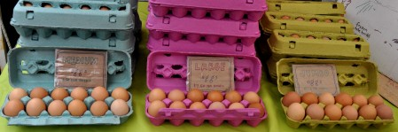 Farm-fresh eggs from Growing Things Farm. Photo copyright 2013 by Zachary D. Lyons.