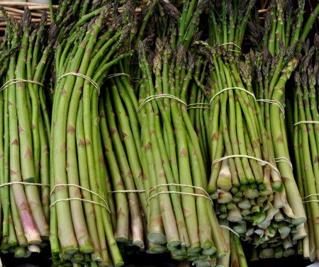 Organic asparagus from Alm Hill Gardens. Photo copyright 2014 by Zachary D. Lyons.