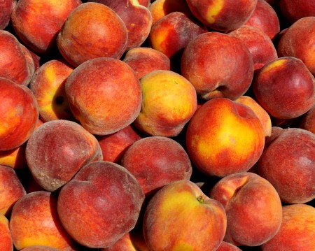 Sugar Time peaches from Collins Family Orchards. Photo copyright 2014 by Zachary D. Lyons.