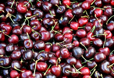 Tieton cherries from Lyall Farms. Photo copyright 2014 by Zachary D. Lyons.