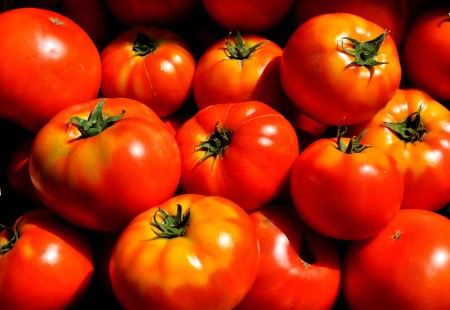 Beeksteak tomatoes from Alm Hill Gardens. Photo copyright 2014 by Zachary D. Lyons.