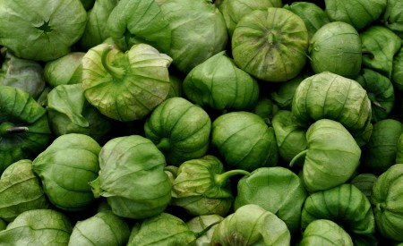 Tomatillos from Alvarez Organic Farms. Photo copyright 2014 by Zachary D. Lyons.