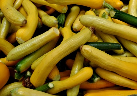 Summer squash from Colinwood Farm. Photo copyright 2014 by Zachary D. Lyons.