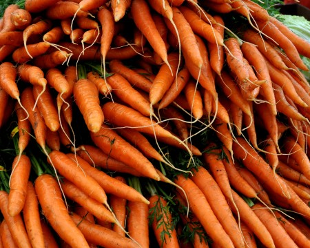 Carrots from Nash's Organic Produce. Photo copyright 2014 by Zachary D. Lyons.