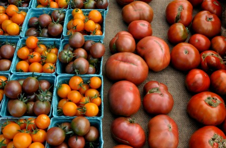 Tomatoes from One Leaf Farm. Photo copyright 2014 by Zachary D. Lyons.