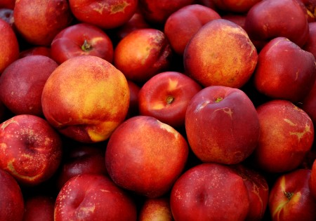 Honeyfire nectarines from Tiny's Organic. Photo copyright 2014 by Zachary D. Lyons.