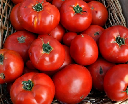 Beefsteak tomatoes from Alm Hill Gardens. Copyright Zachary D. Lyons.