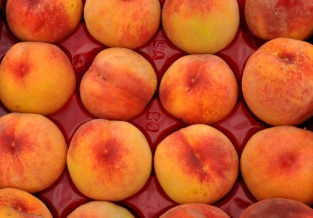 Rosa-Hale peaches from Martin Family Orchards. Photo copyright 2014 by Zachary D. Lyons.