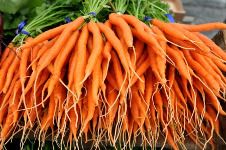 Sweet Snax carrots from One Leaf Farm. Copyright Zachary D. Lyons.
