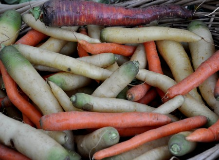 A rainbow of carrots from Oxbow Farm at Ballard Farmers Market. Copyright Zachary D. Lyons.