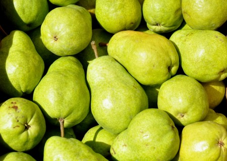 Bartlett pears from Martin Family Orchards at Ballard Farmers Market. Copyright Zachary D. Lyons.