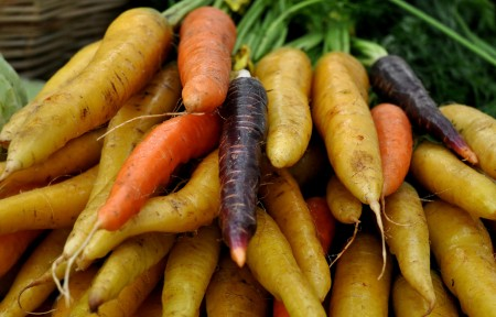 Rainbow carrots from Nash's Organic Produce at Ballard Farmers Market. Copyright Zachary D. Lyons.