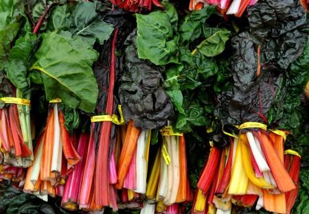 Rainbow chard from Nash's Organic Produce at your Ballard Farmers Market. Copyright Zachary D. Lyons.