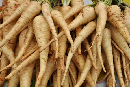 Parsnips from Pa Garden at Ballard Farmers Market. Copyright Zachary D. Lyons.
