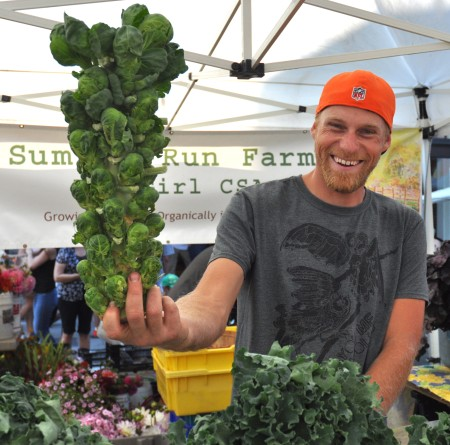 Walt models a Brussels sprout tree from Summer Run Farm at Ballard Farmers Market. Copyright Zachary D. Lyons.