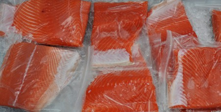 Fresh Washington coastal red king salmon from Wilson Fish at Ballard Farmers Market. Copyright Zachary D. Lyons.