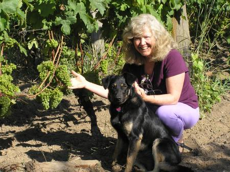 Maggie and pup Lola inspecting the Madeleine Angevine grapes at LIV (Lopez Island Vineyards). Photo courtesy LIV.
