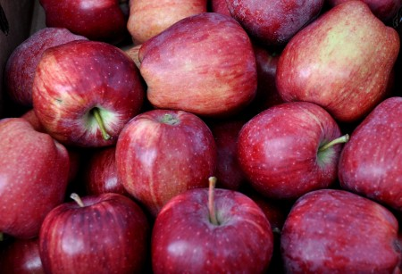 Red Delicious apples from Martin Family Orchards at Ballard Farmers Market. Copyright Zachary D. Lyons.