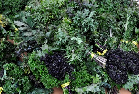 Mixed kale from Alm Hill Gardens at Ballard Farmers Market. Copyright Zachary D. Lyons.