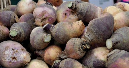 Rutabagas from Alm Hill Gardens at Ballard Farmers Market. Copyright Zachary D. Lyons.