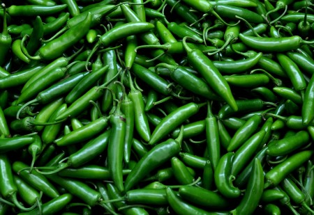 Serrano chile peppers from Stoney Plains Organic Farm at Ballard Farmers Market. Copyright Zachary D. Lyons.