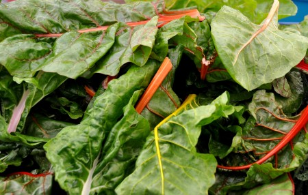 Chard from Colinwood Farm at Ballard Farmers Market. Copyright Zachary D. Lyons.