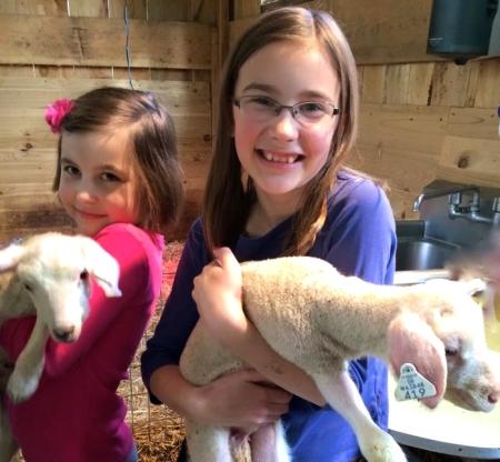 Happy Swanson family, including newborn lambs photo 2015